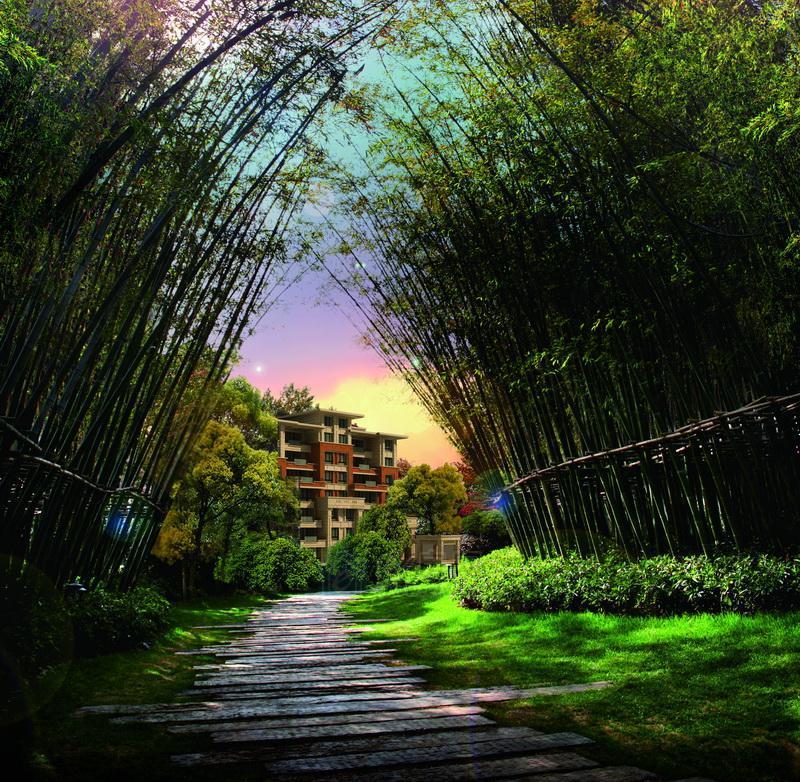 竹林风景意境图片